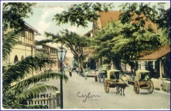 Ceylon, Sri Lanka, Colombo, Church Street, um 1910