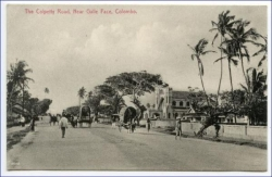 Ceylon, Sri Lanka, Colombo, Colpetty Road, um 1910