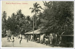 Ceylon, Sri Lanka, Colombo, Road to Mount Lavinia, um 1910
