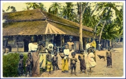 Ceylon, At the road side, gel. 1910 --